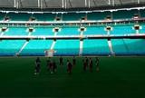Gigantes adormecidos? Três estádios da Copa estão no vermelho em 2015