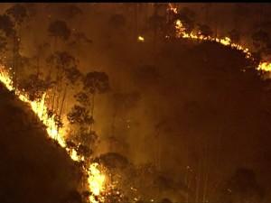 Incêndio Serra da Cantareira (Foto: GloboNews)