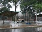 Chuvas continuam a cair em todo o Acre nesta sexta-feira (7), diz Sipam