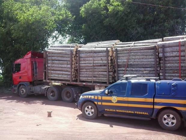 Madeira ilegal foi apreendida pela PRF. (Foto: Divulgação/ PRF)