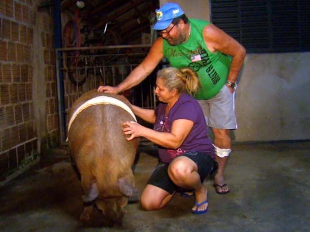 Dona Iraci diz que Baby tem ciúmes dela e não deixa ninguém se aproximar ou cuidar dele (Foto: Reprodução/EPTV)