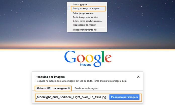 Busca de imagens usando uma URL (Foto: Reprodução/Barbara Mannara)