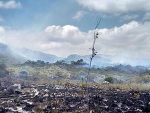 Fogo já destruiu área de 230 hectares na Chapada Diamantina (Foto: Dviulgação/Corpo de Bombeiros Militares)
