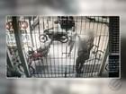 Câmeras registram assalto em porta de escola em Marituba