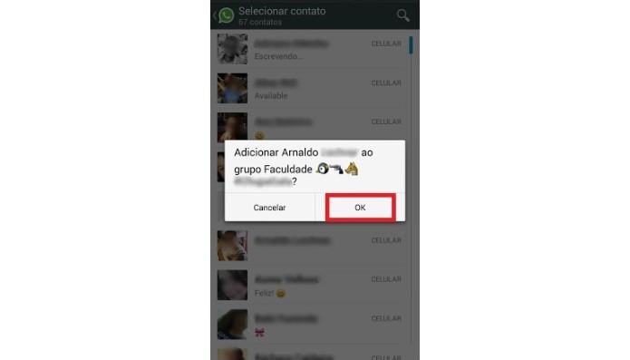Confirmando a inclusão de um novo participante no grupo do WhatsApp (Foto: Reprodução/Lívia Dâmaso)