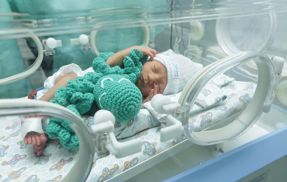 Polvos de crochê ajudam a acalmar bebês prematuros de Curitiba (Foto: Giuliano Gomes/PR Press)