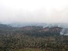 80 militares reforçam combate a fogo em reserva indígena no Maranhão
