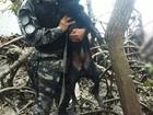 Com ajuda de cão farejador, PM acha dois corpos em manguezal no RN