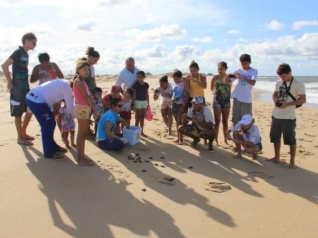 Dezena de pessoas acompanharam a soltura dos animais (Foto: Projeto Biomade)