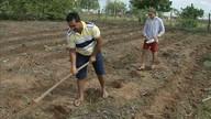 Agricultores de Paramoti recebem semente para a safra 2018