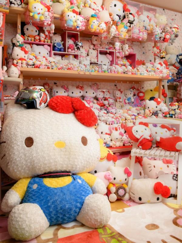 O colecionador possui mais de cinco mil itens da personagem Hello Kitty (Foto: Divulgação )
