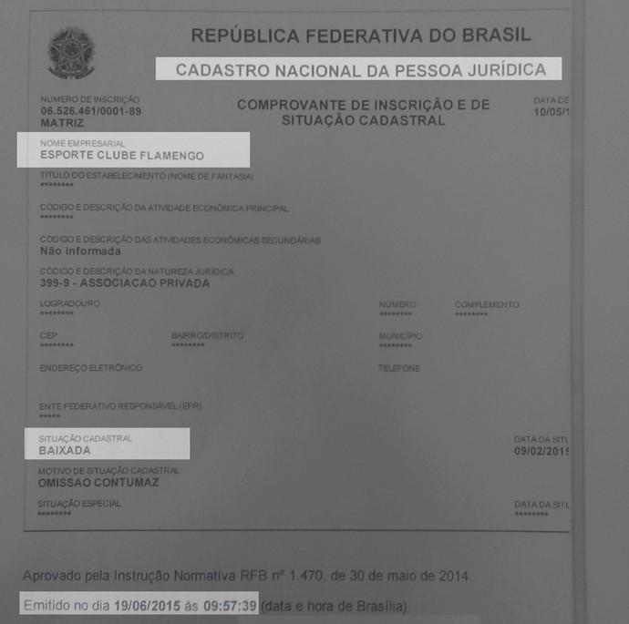 CNPJ Flamengo-PI (Foto: Reprodução/Ministério da Fazenda)