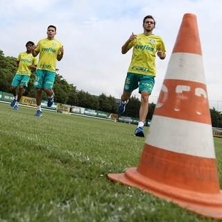 Palmeiras (Foto: Cesar Greco / Fotoarena)