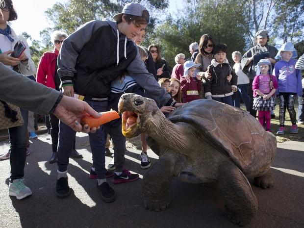 Tartaruga Hugo recebe comida sob os olhares de visitantes do parque (Foto: Jason Reed/Reuters)