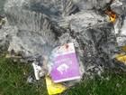 Dezenas de livros queimados são flagrados em escola de Mairinque