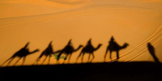 A sombra da caravana de dromedários é projetada sobre uma duna do Erg Chebbi (Foto: © Haroldo Castro/Época)