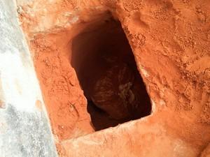 Quadra onde túnel estava é usada para banhos de sol e visitas em Alcaçuz (Foto: Divulgação/Sejuc-RN)