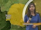 Menino internado com suspeita de dengue morre em Cascavel, no Paraná