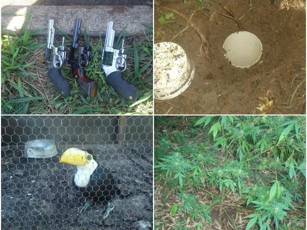 Apreensão foi feita em uma Área de Preservação Ambiental (Foto: Divulgação/GCM de Rio Claro)