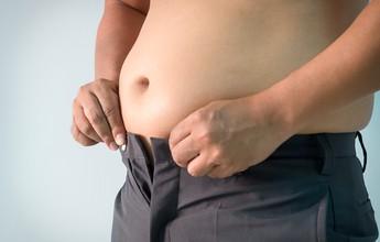 Estudo mostra que células de gordura afetam órgãos distantes e as funções