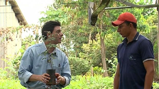 Repórter Dirceu Martins mostra o exemplo de agricultura sustentável em Goiás (Foto: Reprodução EPTV)