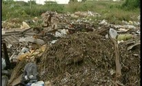 Calendário: Bairro em Valadares enfrenta problemas de lixo e abandono