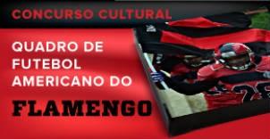 Quadro do Flamengo Fa