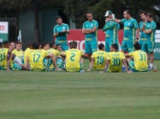 Cuca Palmeiras elenco (Foto: Cesar Greco/Ag Palmeiras/Divulgação)