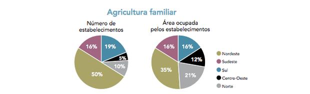 Agricultura familiar (Foto: Adaptado de www.mst.org.br.)
