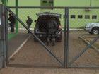 Facções forçaram presos mortos por overdose no CE a usar droga, diz DPE