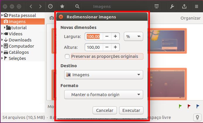 Tela da opção que Redimensionar imagens do gThumb (Foto: Reprodução/Edivaldo Brito)