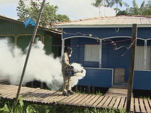Agentes realizaram fumace em distrito de Macapá para matar mosquito (Foto: Reprodução/TV Amapá)