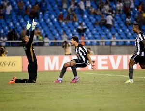 Botafogo x Fluminense, comemoração 2