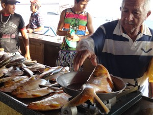 Uma das formas de distribuição do pescado é a venda direta ao consumidor que frequenta a Feira (Foto: Glebson Viana/G1)