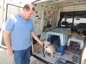 Alexandre é dono do vira-lata Pernê e taxista exclusivo para cães e gatos. (Foto: Pedro Carlos Leite/TV Diário)