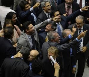 Parlamentares das bancadas do RJ e ES se exaltaram durante a sessão que derrubou os vetos de Dilma à lei que distribui os royalties do petróleo (Foto: Fabio Pozzebom / Abr)