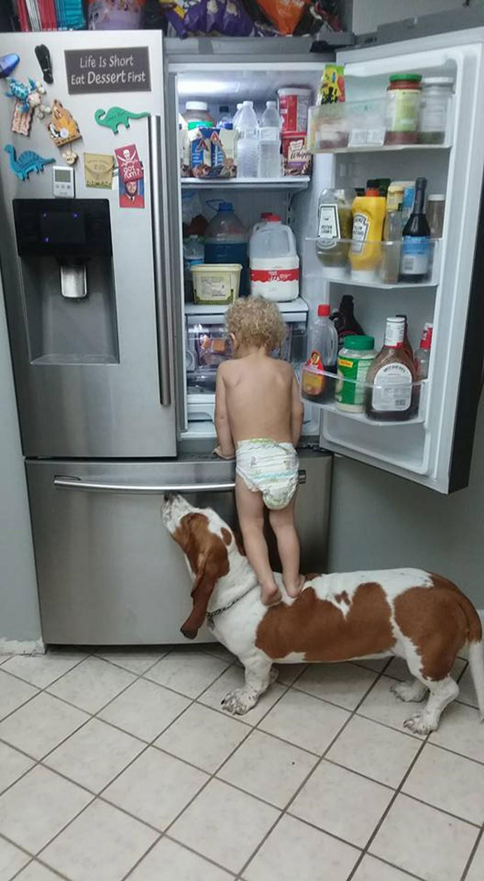 Bebê tem 'comparsa canino' para 'assaltar' geladeira nos EUA (Foto: Rob Herbert/Facebook)