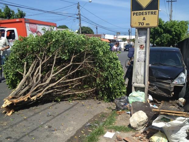Um homem perdeu o controle do veículo e acabou colidindo em um poste na Avenida Capitão José Pessoa, em frente ao Hospital Laureano, no bairro de Jaguaribe, em João Pessoa. O carro ainda derrubou uma árvore antes de atingir o poste, por volta das 14h30 desta quinta-feira (17). (Foto: Walter Paparazzo/G1)