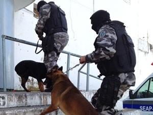 Canil da PM também participa da ação no presídio do Roger em João Pessoa (Foto: Walter Paparazzo/G1)