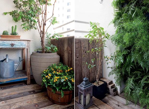 jardim-pequeno-Beatriz Quinelato (Foto: Lilian Knobel/Editora Globo)