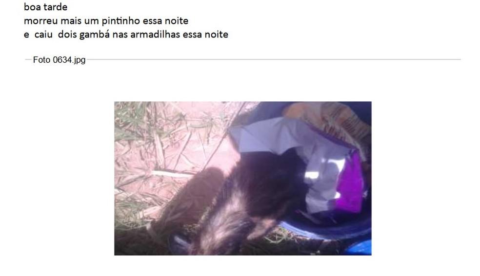 E-mail informa Instituto Lula sobre o dia a dia do sítio em Atibaia  (Foto: Reprodução)