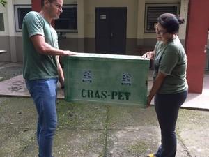 Aves foram resgatadas e receberam tratamento em Cras de São Paulo (Foto: Naturatins/Divulgação)