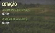 Veja as cotações rurais na região de Presidente Prudente (Reprodução/TV Fronteira)