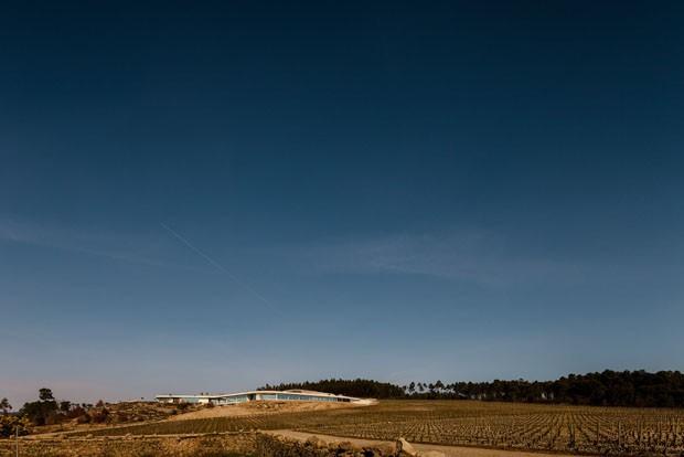 Um hotel no meio dos vinhedos portugueses (Foto: Hugo Carvalho Araújo)