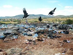 Área de despejo irregular de lixo na Paraíba (Foto: Divulgação/Ibama)