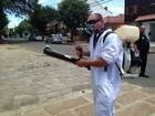 Prefeitura de Porto Alegre aplica inseticida em dois bairros da cidade