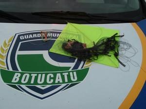 Motociclista sofreu ferimentos ao ser atingido por linha com cerol (Foto: Divulgação/ Guarda Civil Municipal)