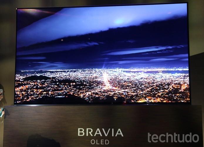 Linha Bravia A1E, com display OLED 4K, contará com Google Assistant (Foto: Anna Kellen Bull/TechTudo)