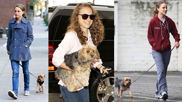 Natalie Portman e seu cachorro Whiz (Foto: .)