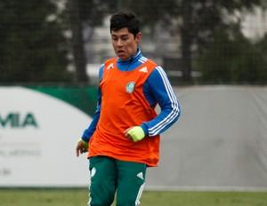 Rondinelly jogo treino Palmeiras x SEV-Hortolândia (Foto: Ale Frata/Agência Estado)